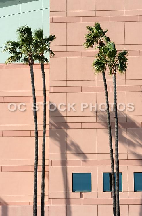 Building Detail Honda Center