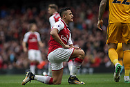 Alexis Sanchez Of Arsenal looks on.<br /> Premier league match, Arsenal v Brighton & Hove Albion at the Emirates Stadium in London on Sunday 1st October 2017. pic by Kieran Clarke, Andrew Orchard sports photography.