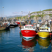Colourful fishing boats in Mallaig harbour, Scotland, UK. Mallaig has always been synonymous with fishing, particularly with the west of Scotland herring fishery which made it the largest herring port in Europe during the 60s and 70s. Today, although the herring fishing is gone, Mallaig remains a port on the West Coast of Scotland for languoustine (prawn) landings.