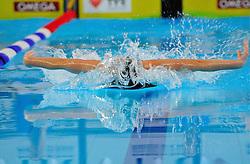 12.11.2010, Schwimmoper, Wuppertal, GER, Deutsche Kurzbahn-Meisterschaft im Bild zeigt die Schmetterlingdisziplin ihre besondere Art des Schwimmens.. EXPA Pictures © 2010, PhotoCredit: EXPA/ nph/  Freund+++++ ATTENTION - OUT OF GER +++++
