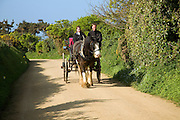 Horse and carriage, Island of Sark, Channel Islands, Great Britain