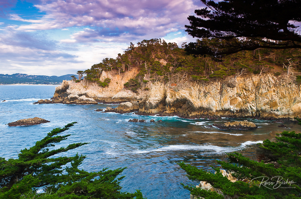 Rocky cliff along the Cypress Grove Trail, Point Lobos State Reserve, Carmel, California USA