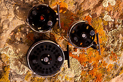 Stock photo of three fly reels on a rock with algae.