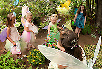 """Danielle Arute gets to pick a """"lollypop"""" flower as she walks through the butterfly garden at Cackleberries annual Fairy Night in Meredith Wednesday evening.  (Karen Bobotas/for the Laconia Daily Sun)"""