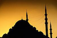 Mosque of Suleyman (Suleymaniye Cami), Istanbul, Turkey