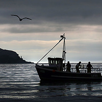 Scottish fishermen on the east coast pick up lobster pots near Bass rock Edinburgh,the Scottish inshore fishing industry is vital to it's remote costal communities.The boats have exclusive rights to fish within six nautical miles of it's coastline.Photograph David Cheskin.