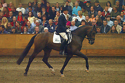 662-Touche<br /> KWPN Paardendagen Ermelo 2004<br /> Photo © Hippo Foto