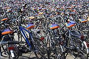 In Arnhem zijn de voor het station geparkeerde fietsen voorzien van een zadelhoesje met reclame.<br /> <br /> In Arnhem parked bicycles at the station get a saddle cover with advertising.