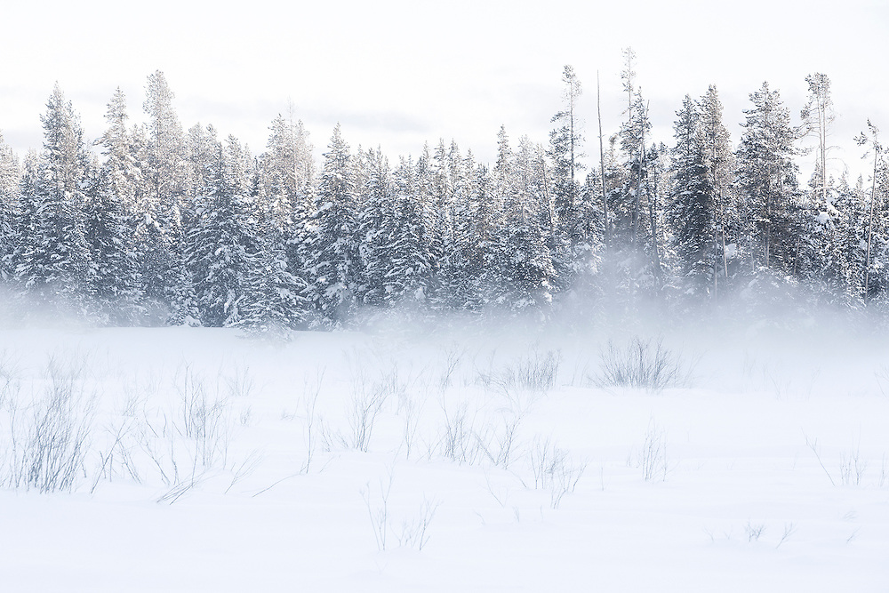 Winter scape fine art photography by Tracie Spence 'Bliss'