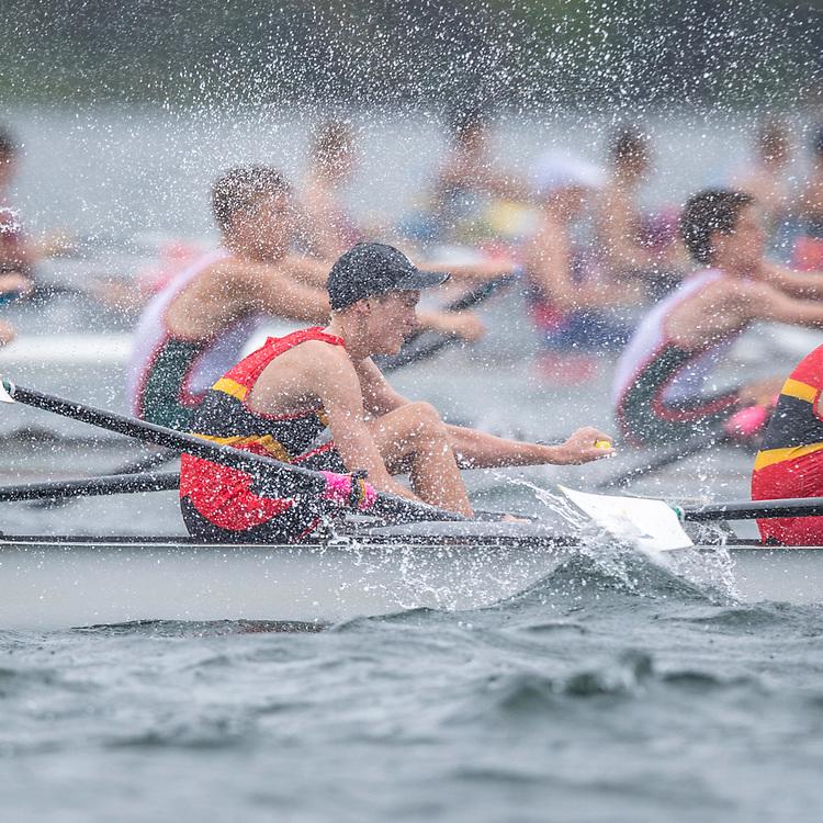 Action from, Lake Pupuke, Auckland 10 February 2018 Copyright photo © Steve McArthur / @RowingCelebration