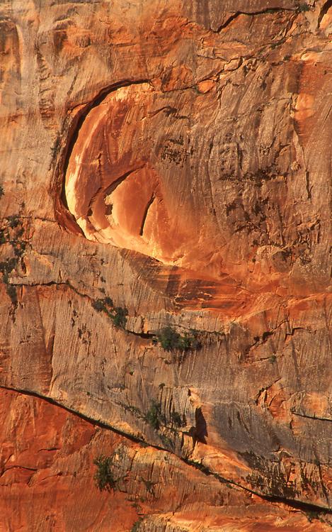 Zion National Park, Southern Utah, USA