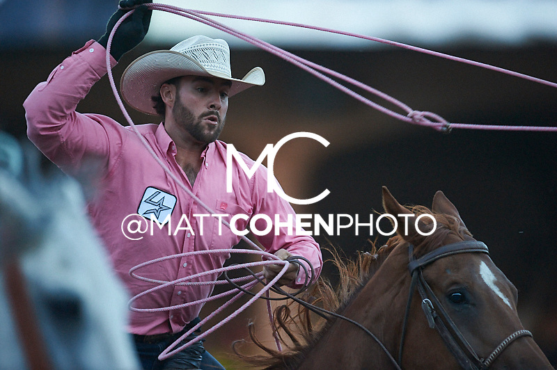 Team roper Branden Edwards of Grand Junction, CO competes at the Pikes Peak or Bust Rodeo in Colorado Springs, CO.<br /> <br /> <br /> UNEDITED LOW-RES PREVIEW<br /> <br /> <br /> File shown may be an unedited low resolution version used as a proof only. All prints are 100% guaranteed for quality. Sizes 8x10+ come with a version for personal social media. I am currently not selling downloads for commercial/brand use.