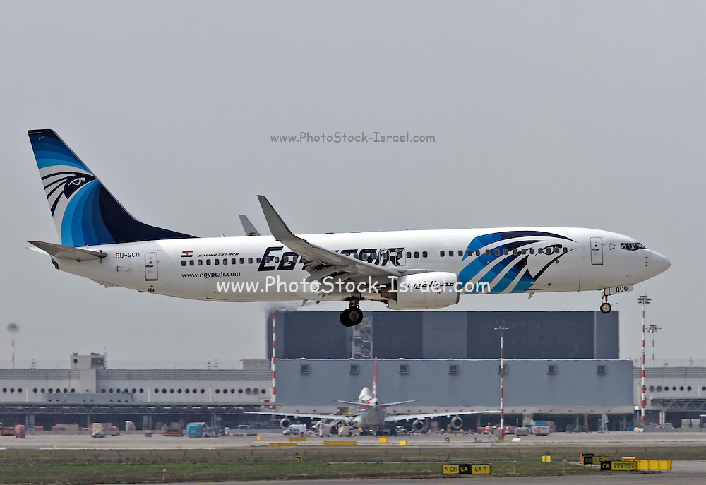 Egyptair Boeing 737 Next Gen, at Malpensa airport, Milan, Italy