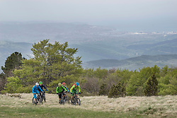 Team of bikers riding bike in grass on mountain