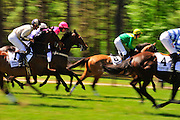 April 7, 2012 - Runners start in the second race at Stoneybrook Steeplechase, Raeford NC