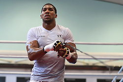 Anthony Joshua during the workout at the English Institute of Sport, Sheffield. PRESS ASSOCIATION Photo. Picture date: Wednesday March 21, 2018. See PA story BOXING Joshua. Photo credit should read: Mike Egerton/PA Wire