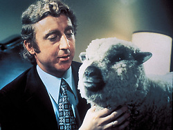 GENE WILDER, (born Jerome Silberman, June 11, 1933 - August 28, 2016) was an American stage and screen comic actor, screenwriter, film director, and author. He was known best for the lead role in the 1971 film 'Willy Wonka in Willy Wonka & the Chocolate Factory,' and the Mel Brooks comedies 'Blazing Saddles', and 'Young Frankenstein', which Wilder co-wrote, garnering the pair an Academy Award nomination for Best Adapted Screenplay. Wilder died at age 83 from complications from Alzheimer's disease. PICTURED: GENE WILDER in a scene from the 1972 Woody Allen film 'Everything You Always Wanted To Know About Sex  But Were Afraid To Ask.' (Credit Image: © UNITED ARTISTS/Entertainment Pictures/ZUMAPRESS.com)