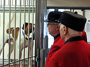 London News pictures. 24.02.2011. Chelsea Pensioners meet the dogs at Battersea Dogs and Cats Home. Starting in March, the Chelsea Pensioners will become well acquainted with the dogs and cats at the charity at Battersea Dogs and Cats home, when Battersea walks its dogs across the Thames River to spend time at the Royal Hospital. In turn, the charity will invite the veteran British Army soldiers in to interact with the many animals it takes in every year. Picture Credit should read Stephen Simpson/LNP