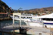 Catalina and Jet Cat Express Docked at Avalon Port Catalina Island