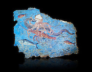 Roman Fresco with a fight scene between octopus, lobster and eel, 125-150 AD. (mosaico fauna marina da porto fluviale di san paolo), museo nazionale romano ( National Roman Museum), Rome, Italy. inv. 463Z4.   Against a black background.<br /> <br /> Excavated from the Porto di San Paolo near the Via Portuense, these frescoes decorated the thermal area of a suburban Roman Villa. The reconstructed fresco fragments, depict a group of three fighting animals: an octopus (octopus vulgaris) clutches a moray eel (muraena helena) and a lobster (palinurus vulgaris) in its tentacles; around them mud mullets (mullus barbatus) and rock mullets (mullus surmuletus) try to escape. Incriptions on the frescoes suggesy that the villa owner was from Alexandria where this style of nautical mosaic and fresco  decorations is found. .<br /> <br /> If you prefer to buy from our ALAMY PHOTO LIBRARY  Collection visit : https://www.alamy.com/portfolio/paul-williams-funkystock/national-roman-museum-rome-fresco.html<br /> <br /> Visit our ROMAN ART & HISTORIC SITES PHOTO COLLECTIONS for more photos to download or buy as wall art prints https://funkystock.photoshelter.com/gallery-collection/The-Romans-Art-Artefacts-Antiquities-Historic-Sites-Pictures-Images/C0000r2uLJJo9_s0