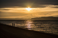 Alki Beach Park @ Sunset (March 22, 2020).