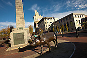 Pack Square pigs with the Vance Monument  and Neo-Gothic Jackson Building in Asheville, NC.