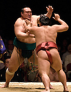 Iwakiyama (left) and Yoshikaze compete in the first round of Day 1 of Grand Sumo Tournament Los Angeles 2008, Los Angeles Sports Arena, Los Angeles, California