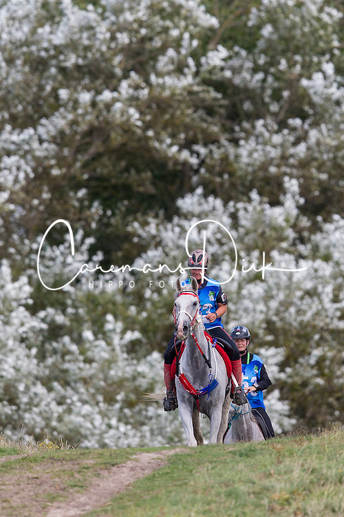 Olaug Espeli Carstensen, (NOR), Al Thaka Mellemgaard<br /> Alltech FEI World Equestrian Games™ 2014 - Normandy, France.<br /> © Hippo Foto Team - Leanjo de Koster<br /> 25/06/14