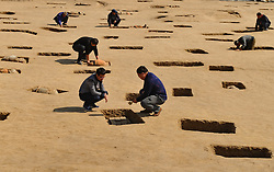 SHIJIAZHUANG, Oct. 10, 2016 (Xinhua) -- Archaeologists work at the ancient tomb site in Huanghua City,  north China's Hebei Province, Oct. 10, 2016. A total of 113 tombs, estimated to be more than 2,000 years old, have been discovered in Hebei, according to archaeologists. The tombs, all of the urn burial type, are part of the Fudi city ruins in Huanghua, Hebei. (Xinhua/Yang Shiyao) (wx) (Credit Image: © Yang Shiyao/Xinhua via ZUMA Wire)