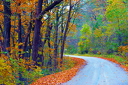 October 2009: Leaves turn to auburn and fall to the ground in the fall along a deserted stretch of rural road west of Galena. Sights to see in and around Galena Illinois. This image was produced in part utilizing High Dynamic Range (HDR) or panoramic stitching or other computer software manipulation processes. It should not be used editorially without being listed as an illustration or with a disclaimer. It may or may not be an accurate representation of the scene as originally photographed and the finished image is the creation of the photographer.