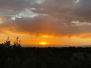 Sunset in Moab, Utah with trees in silhouette in the foreground