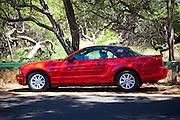 Red Mustang Convertable, Maui, hawaii