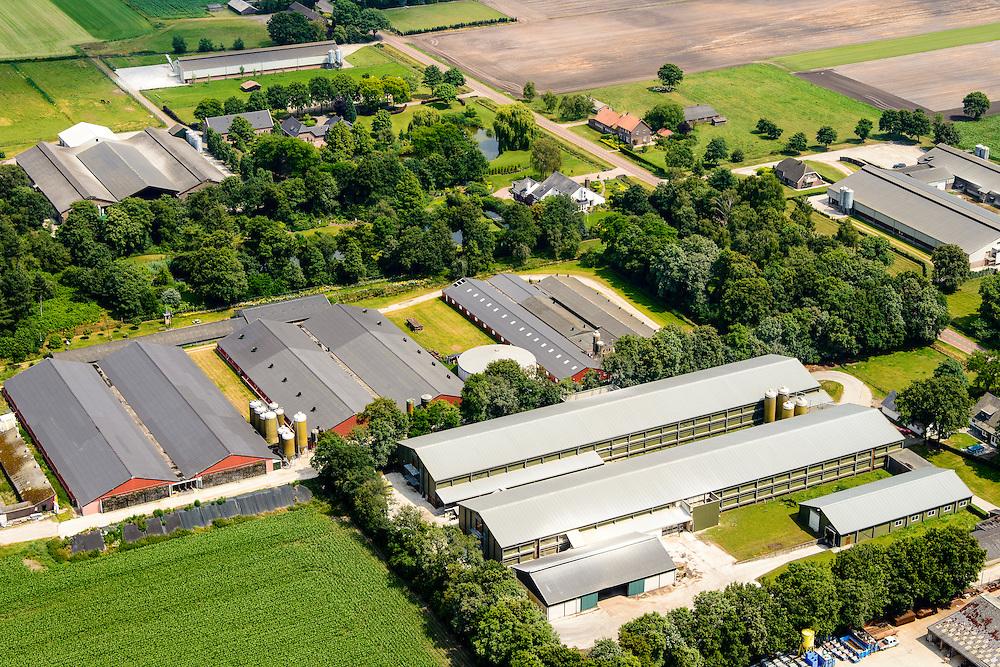 Nederland, Limburg, Gemeente Venray, 26-06-2014;  Ysselsteyn, grootschalige varkensfokkerijen in de Peel. Megastallen.<br /> Large-scale pig farming in mega stables.<br /> luchtfoto (toeslag op standaard tarieven);<br /> aerial photo (additional fee required);<br /> copyright foto/photo Siebe Swart.