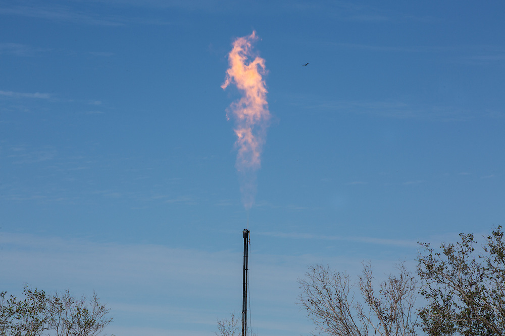 October 16, 2013, Nordheim Texas , A natural gas flare coming from a site used in the prodcution of oil and gas in the  Eagle Ford Shale, one of the most prodcutive hydraulic fraturing regions in the America. The hydraulic fraturing industry is controversial becuase the long and short term effects of horizontal drilling are unknown.