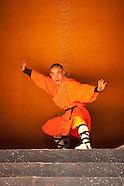 Project Shaolin