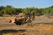 An operator of heavy equipment covers his face to protect himself from dust disturbed during a construction project in Tucson, Arizona, USA. Dust in the Sonoran Desert can contain a fungus that can cause acute coccidioidomycosis or valley fever.  The disease is on the rise in Arizona and in other parts of the southwest.