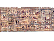 Ancient Egyptian Book of the Dead papyrus - Ptolemaic Period (722-30BC).Turin Egyptian Museum. White background .<br /> <br /> If you prefer to buy from our ALAMY PHOTO LIBRARY  Collection visit : https://www.alamy.com/portfolio/paul-williams-funkystock/ancient-egyptian-art-artefacts.html  . Type -   Turin   - into the LOWER SEARCH WITHIN GALLERY box. Refine search by adding background colour, subject etc<br /> <br /> Visit our ANCIENT WORLD PHOTO COLLECTIONS for more photos to download or buy as wall art prints https://funkystock.photoshelter.com/gallery-collection/Ancient-World-Art-Antiquities-Historic-Sites-Pictures-Images-of/C00006u26yqSkDOM
