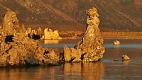 Mono Lake, South Tufa Area. Image taken with a Nikon D3 camera and 200 mm f/2 lens (ISO 200, 200mm, f/16, 1/125 sec).