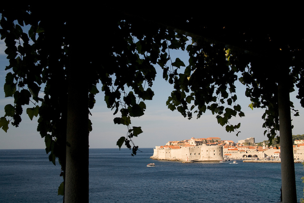 Europe, Croatia, Dalmatia, Dubrovnik.  Adriatic Sea and city walls (built 10th century) surrounding old town with stone houses, viewed through grape vines.  The historic center of Dubrovnik is a UNESCO World Heritage site.
