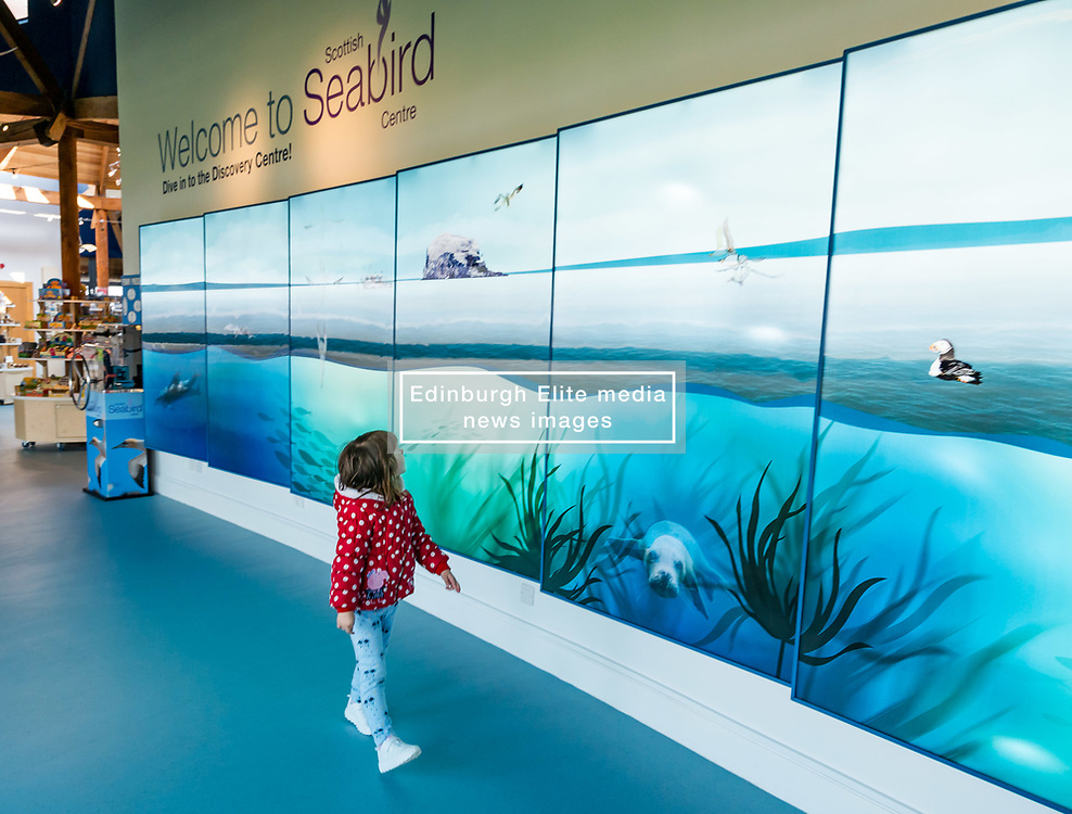 Pictured: Scottish Seabird Centre reopens. North Berwick, East Lothian, 04 April 2019. North Berwick, East Lothian, Scotland, United Kingdom, 4th April 2019. Scottish Seabird Centre reopens after 3 months of renovation and refurbishment. The lenticular wall display at the entrance makes a striking focal point. Terns flying across the ceiling lead visitors to the Discovery Centre.  The cafe area has more seating next to windows and the outside decking area has been renewed. The centre officially opens tomorrow. <br /> Sally Anderson   EdinburghElitemedia.co.uk