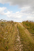 Uphill section of the ancient Ridgeway pathway crossing chalk downland near Liddington Castle, Wiltshire, England, UK