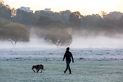 © Licensed to London News Pictures. 04/11/2020. London, UK. A dog walker enjoys enjoy the frosty and misty sunrise this morning over Richmond Park in South West London as temperatures dropped to -2 overnight. However, the rest of the week will be sunny and mild as the national lockdown begins at midnight tonight forcing millions of people to stay at home and shops and restaurants to close. Last Saturday, Prime Minister Boris Johnson announced new Covid-19 lockdown restrictions for England from Thursday (tomorrow) with pubs, restaurants, non-essential shops and gyms to close. Photo credit: Alex Lentati/LNP