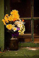 A cluster of organic flower cuttings sit on a window sill outside a utility building on the Muth farm.