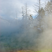 Steam rises above pools at Mammoth Hot Springs, Yellowtone National Park, Wyoming