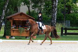 Haas Katharina (AUT) - Wilsberg 2<br /> FEI European Championship Juniors - Bern 2012<br /> © Hippo Foto - Leanjo de Koster