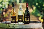 Eunice Chiweshe Black WInemakerfor Oregon Wine Press
