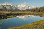 Spring Snow, Grizzly Ridge, Heart K Pond, Genesee Valley, California Mountains, Sierra Nevada Mountains, Spring, Fir Forest, Blue Sky