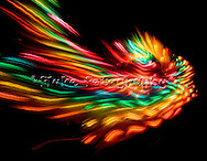 """Psychadelic photograph of bird made up of neon lights.  Another photograph that just, """"is.""""  This is actually a small round set of lights on top of a pole in an arcade.  Use the sledge hammer and make the slider go up the pole to ring the bell and set off the lights.  Where this bird came from, I can't tell you."""