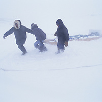 BAFFIN ISLAND, Nunavut, Canada. Inuit hunters pull komatik sled through white-out conditions in a blizzard.