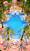 Epic, Tropical Deco-style Raleigh Hotel pool in Miami Beach -- designed by L. Murray Dixon in 1940 -- was hailed by Life magazine as the most beautiful pool in Florida. Some say it still is.